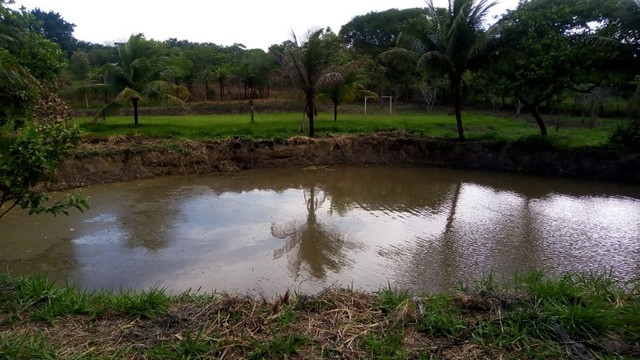 Alugo Sítio em Itaboraí com 11.500 m2 - Foto 19