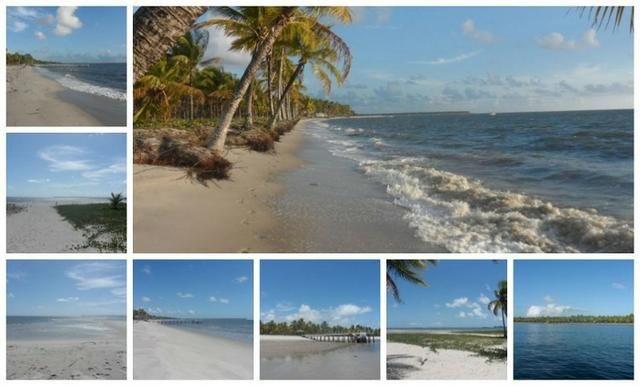 Gleba de Terras, Ilha de Tubarão, Camamu-BA