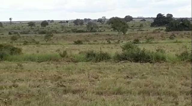 Fazenda de 853 hectares .400 hectares mecanizados . Colinas do Tocantins- TO - Foto 7