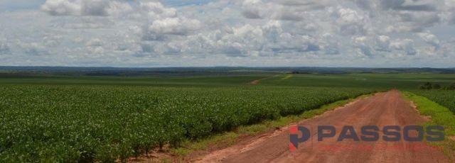 8067 | fazenda à venda em santa rita do trivelato , santa rita do trivelato
