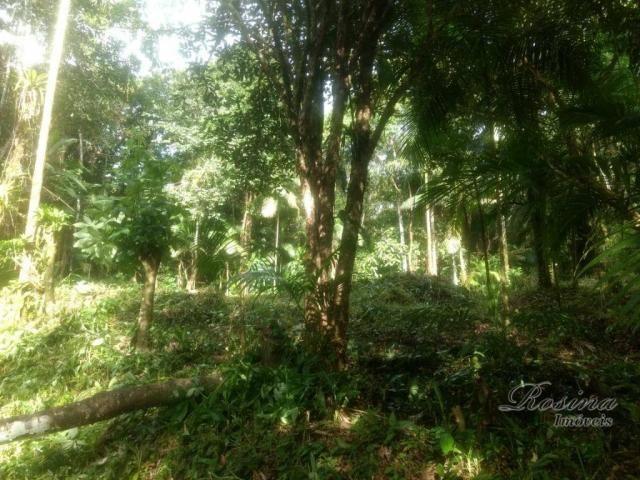 Terreno à venda, 20000 m² por R$ 88.000,00 - Capituva - Morretes/PR - Foto 11