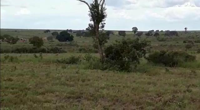 Fazenda de 853 hectares .400 hectares mecanizados . Colinas do Tocantins- TO - Foto 8