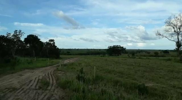 Fazenda de 853 hectares .400 hectares mecanizados . Colinas do Tocantins- TO - Foto 12