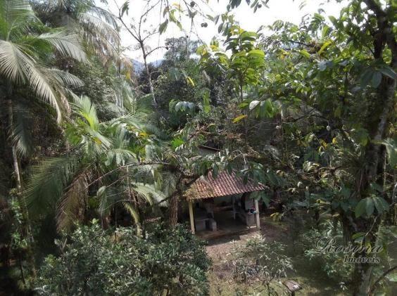 Chácara com 3 dormitórios à venda, 3100 m² por r$ 195.000,00 - porto de cima - morretes/pr - Foto 7