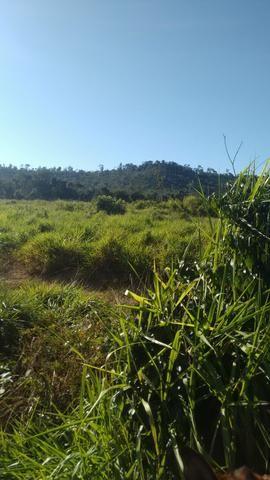 Imperdível vendo excelente Fazenda em Bom Jardim-Ma - Foto 11
