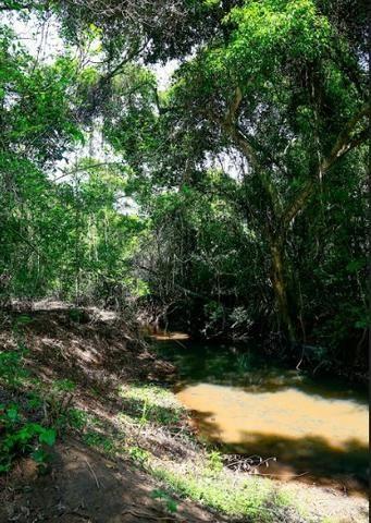 Condomínio de Chácaras Trindade - Complexo Terra Santa - Foto 11