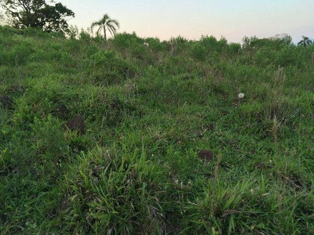 Sitio em Santo Antônio 8 Ha com Campo, Roça e Galpão. Linda Vista. Peça o Vídeo Aéreo - Foto 13