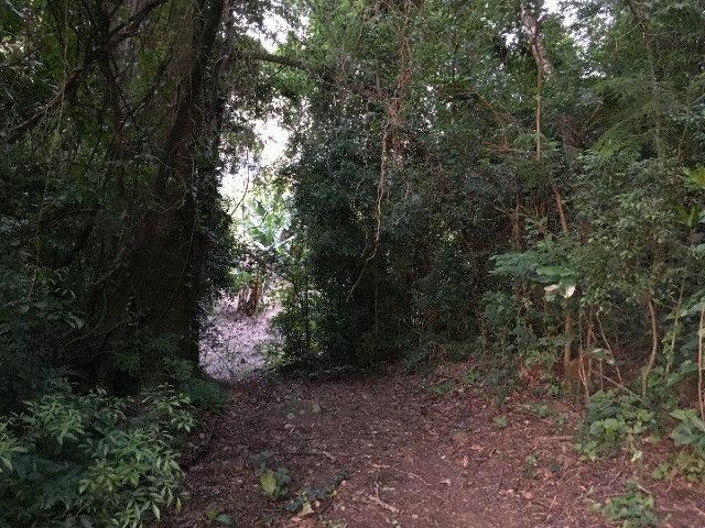 Sitio em Santo Antônio 8 Ha com Campo, Roça e Galpão. Linda Vista. Peça o Vídeo Aéreo - Foto 18