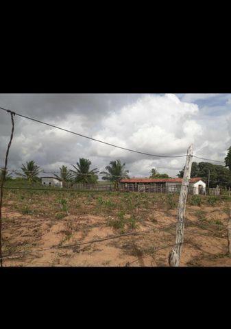 Linda Fazenda com 45 hectares na região monte alegre