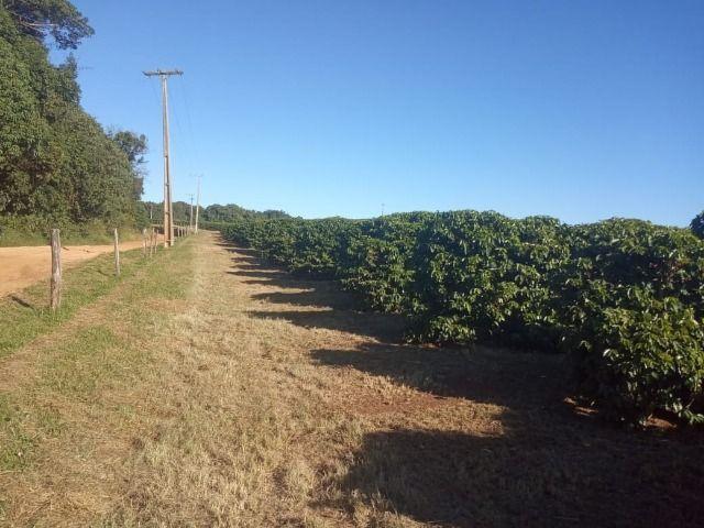 Fazenda em piumhi 55 alqueires 6.000.000.00 - Foto 2