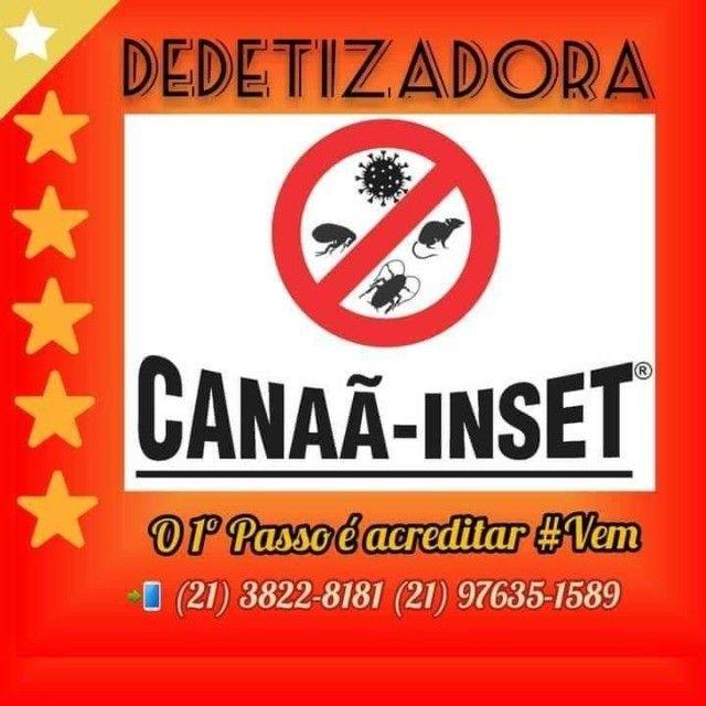 Dedetização,Descupinização,Desratização e Sanitização Canaã-Inset