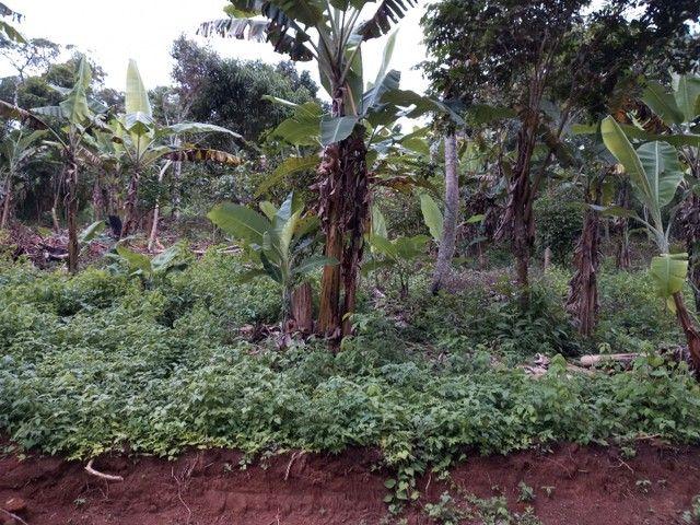 Vendo Terreno na serra de mulungu!! - Foto 3