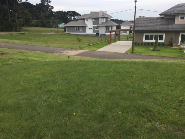 Terreno à venda, 810 m² por r$ 626.798,45 - centro - canela/rs - Foto 3