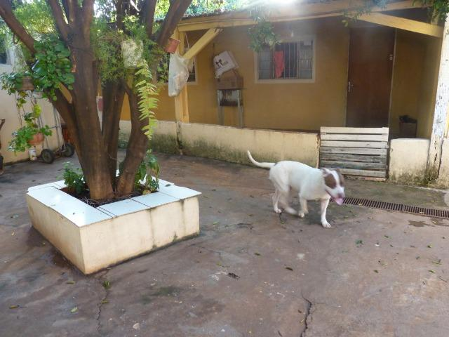 Casa - Jardim Nhanha - Foto 13