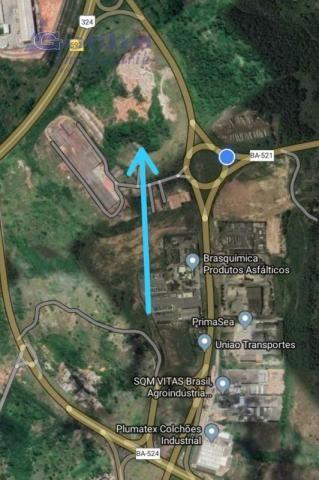 Área 230.000m2 a venda - margeando a br-324 - Foto 2
