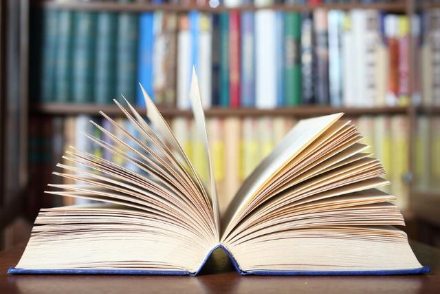 Assessoria em monografia, desenvolvimento de texto, tcc ,artigo etc