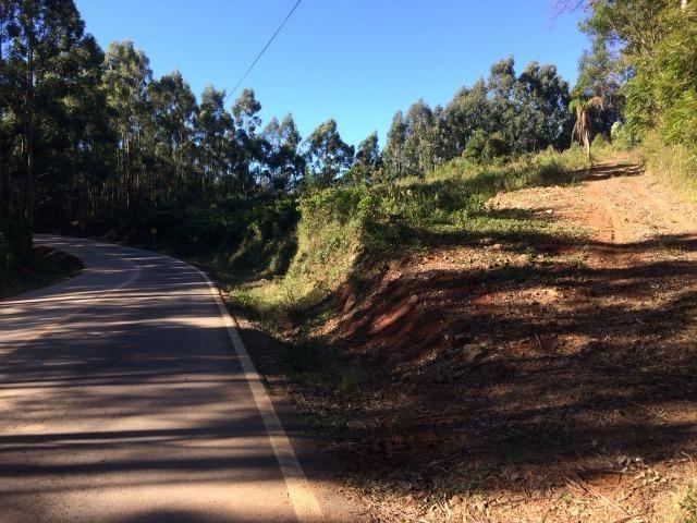 Área de terra 5 hectares, Barão - RS