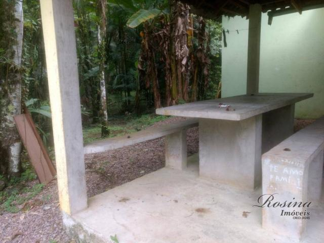 Chácara com 3 dormitórios à venda, 3100 m² por r$ 195.000,00 - porto de cima - morretes/pr - Foto 13