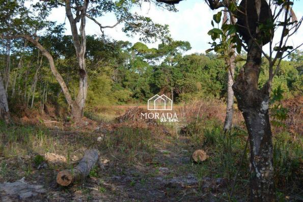 Terreno à venda, 40.920m² por R$ 690.000 - Barra Grande - Maraú/BA - Foto 18