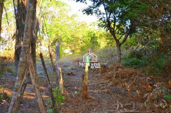 Terreno à venda, 40.920m² por R$ 690.000 - Barra Grande - Maraú/BA - Foto 15