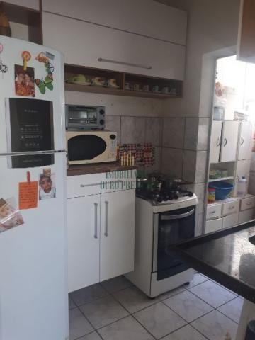 Apartamento à venda com 2 dormitórios em Rio branco, Belo horizonte cod:3825 - Foto 5