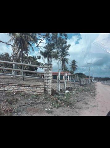 Linda Fazenda com 45 hectares na região monte alegre - Foto 6