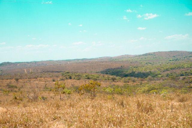 Fazendinha Portal dos Sertões (Codisburgo) - Foto 6