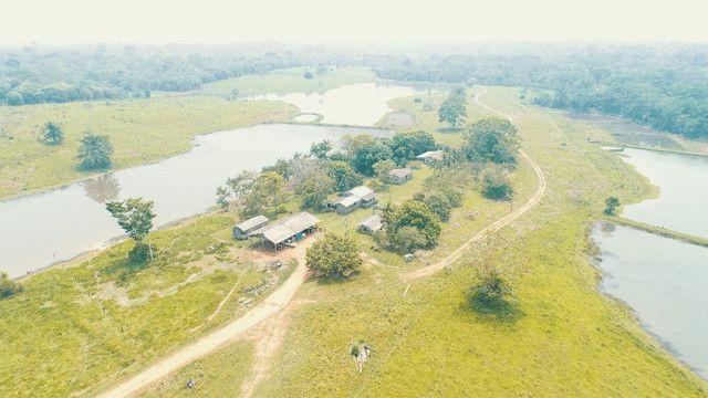 Fazenda próxima de Rio Branco - Acre - Foto 6