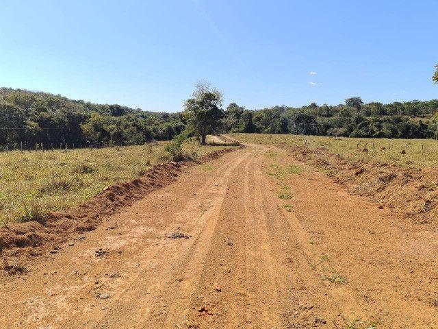Fazendinha Portal dos Sertões (Codisburgo) - Foto 4
