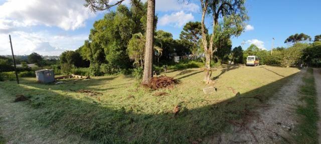 Chácara à venda, 1242 m² - Colônia Antônio Prado - Almirante Tamandaré - Foto 2