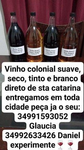 Vinhos coloniais - Foto 4