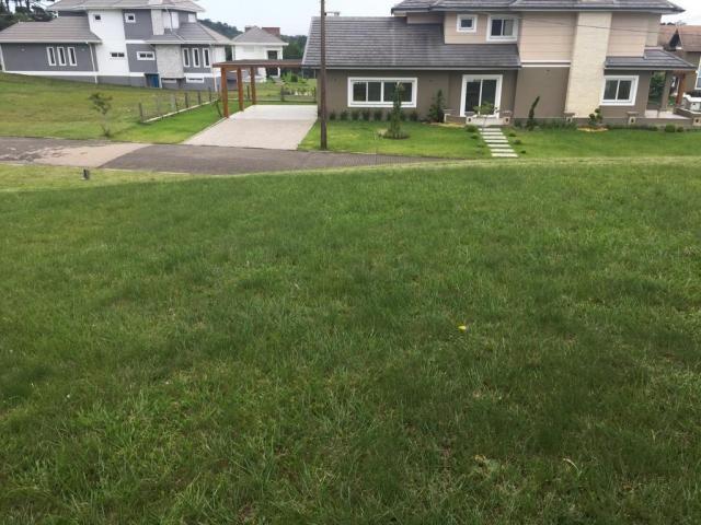 Terreno à venda, 810 m² por r$ 626.798,45 - centro - canela/rs - Foto 7