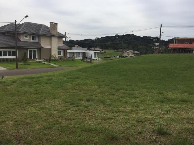 Terreno à venda, 810 m² por r$ 626.798,45 - centro - canela/rs - Foto 2