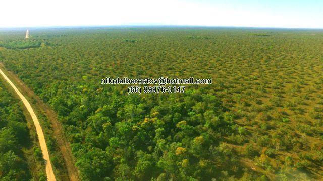 Fazenda 3.000 hectares leste mt nikolaiimoveis