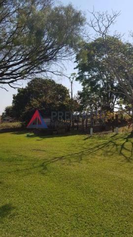 8042   Sítio à venda em NÃO INFORMADO, MANDAGUAÇU - Foto 6