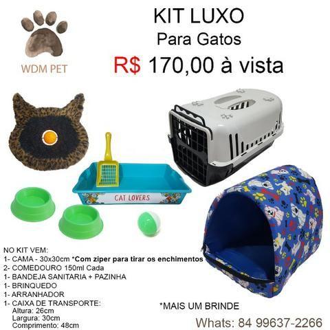 KITs Para Gatos - Foto 5