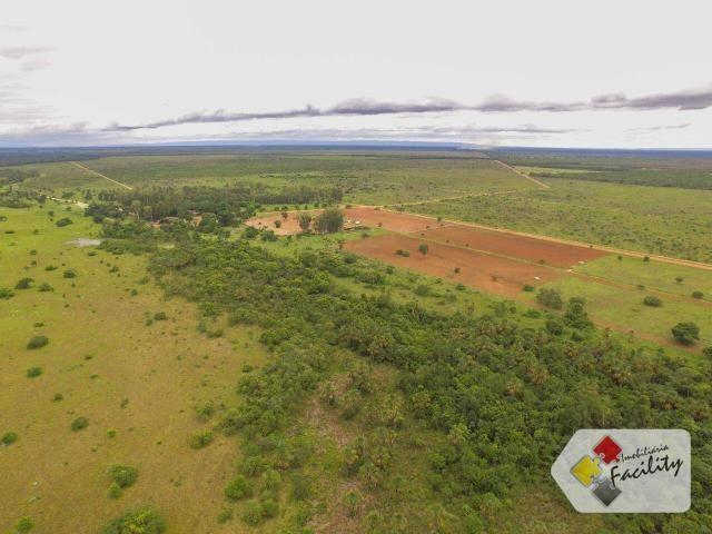 Linda Fazenda estruturada em João Pinheiro MG - Foto 9