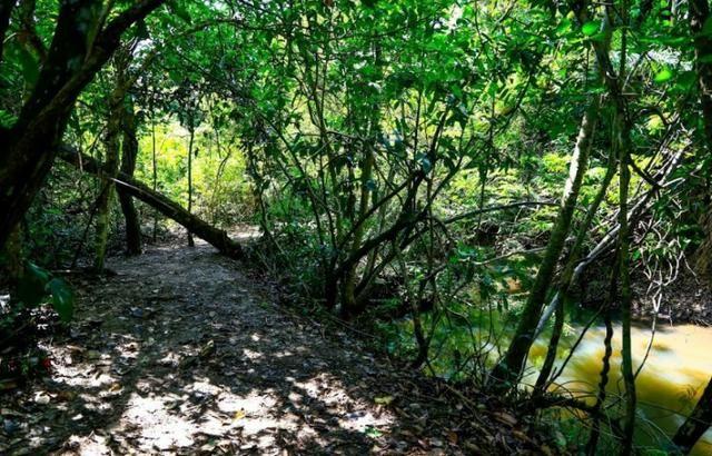 Condomínio de Chácaras Trindade - Complexo Terra Santa - Foto 15