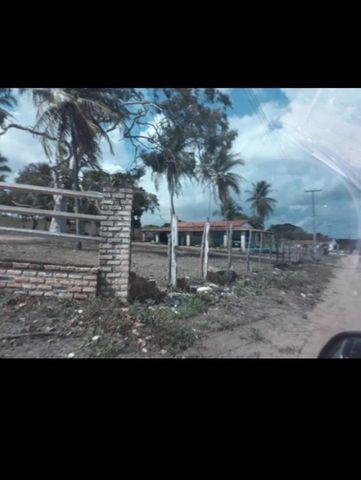 Linda Fazenda com 45 hectares na região monte alegre - Foto 12