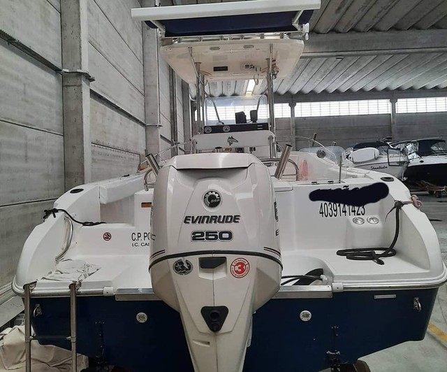 Fishing 265 Ano 2013 x1 Evinrude E-TEC 250 HP não Victor Fishirmam Casbrasmar  - Foto 10