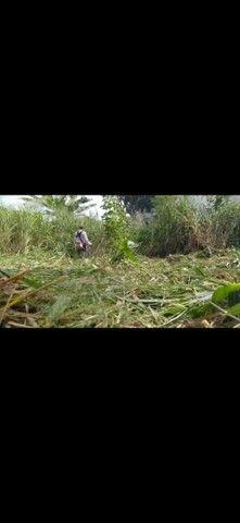 Trabalho como roçador.. limpeza de terreno e Serra para podas  - Foto 2