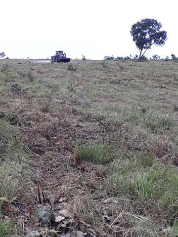 Fazenda de 853 hectares .400 hectares mecanizados . Colinas do Tocantins- TO - Foto 13
