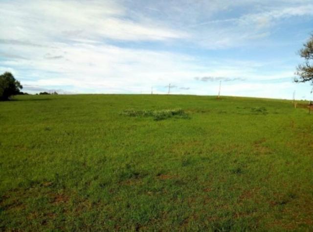 Área de terras com 27,7 hectares em Rincão Del Rey, Rio Pardo-RS