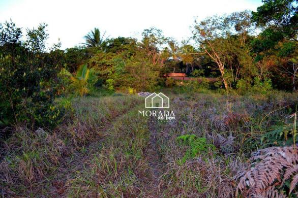 Terreno à venda, 40.920m² por R$ 690.000 - Barra Grande - Maraú/BA - Foto 20
