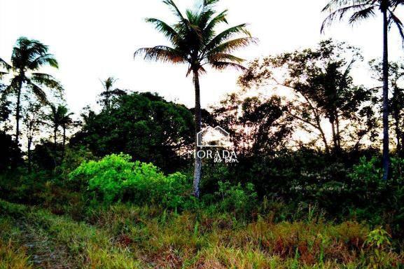 Terreno à venda, 40.920m² por R$ 690.000 - Barra Grande - Maraú/BA - Foto 19