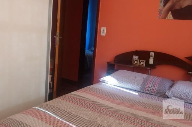 Apartamento à venda com 3 dormitórios em Salgado filho, Belo horizonte cod:241475 - Foto 3