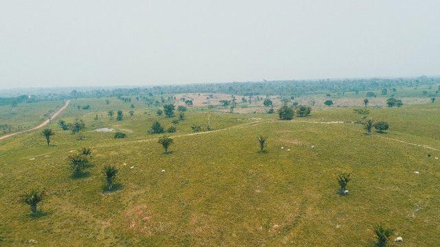 Fazenda próxima de Rio Branco - Acre - Foto 9