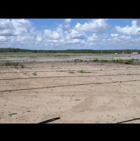 Linda Fazenda com 70 hectares na região de Ceará mirim com rio perene - Foto 6