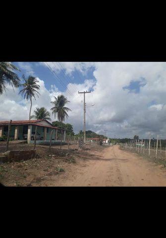 Linda Fazenda com 45 hectares na região monte alegre - Foto 8