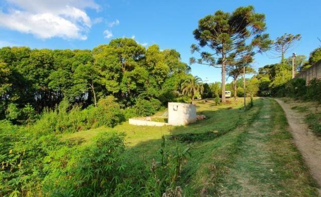 Chácara à venda, 1242 m² - Colônia Antônio Prado - Almirante Tamandaré - Foto 3
